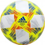 Мяч футзальный Adidas Conext19 Sala65 арт.DN8644 р.4