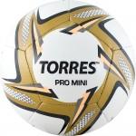 Мяч футбольный сувенирный Torres Pro Mini арт.F31910