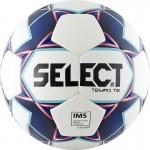 Мяч футбольный SELECT Tempo TB арт.810416-009 р.5
