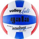 Мяч волейбольный Gala Academy арт. BV5181S р.5