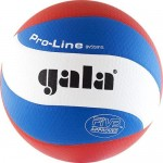Мяч волейбольный Gala Pro-Line 10 FIVB арт. BV5591S р. 5