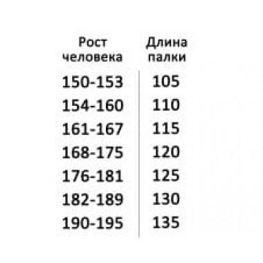 Палки для скандинавской ходьбы EKO 100-130 см, серебристые